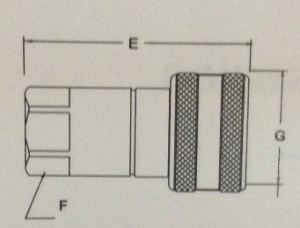 Female Part Drawing